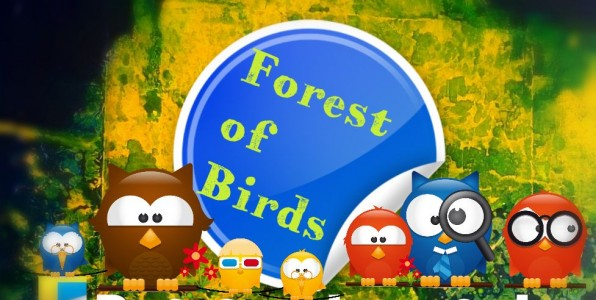 Forest of Birds Amazon Canada
